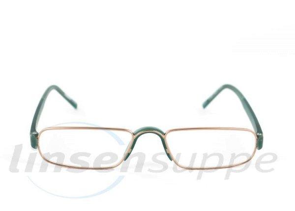 Rodenstock R 2180 vert